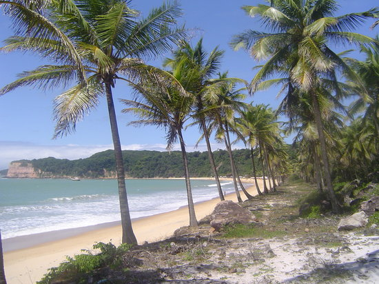 Praia de Pipa: Dolphin Beach , PIPA BRAZIL