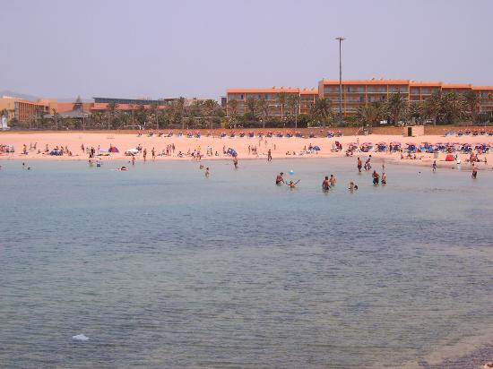 Playa del castillo we can see the hotel barcel el castillo picture of fuerteventura canary - Jm puerto del rosario ...