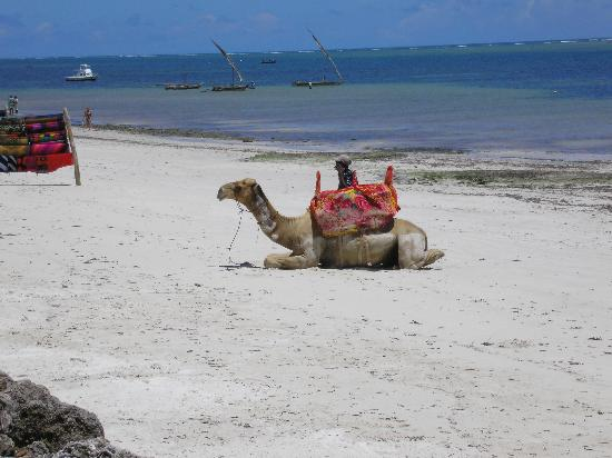 Mombasa, Kenya: the beach at