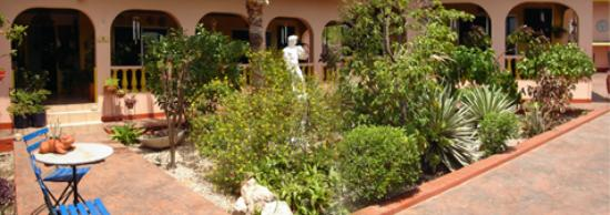 Littledavid Guesthouse: Photo of Little David