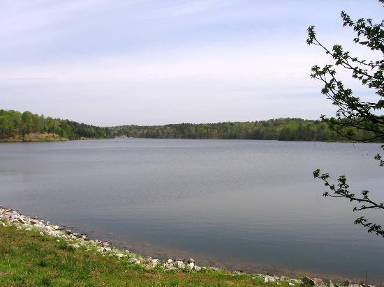 Big lake within the park picture of big hill pond state for Center hill lake fishing report
