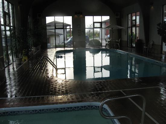Comfort Inn West: Indoor Pool