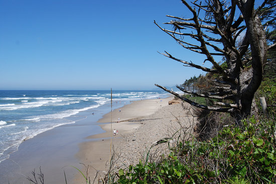 Tillamook, OR : Beach at Cape Lookout State Park