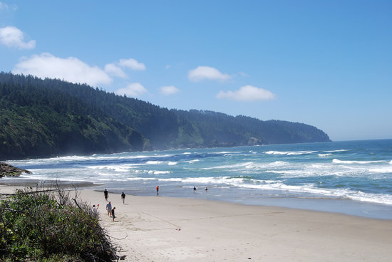 Tillamook, OR : Ocean at Cape Lookout State Park
