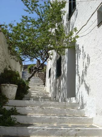 Hotel Ubaldo: Annexe entrance