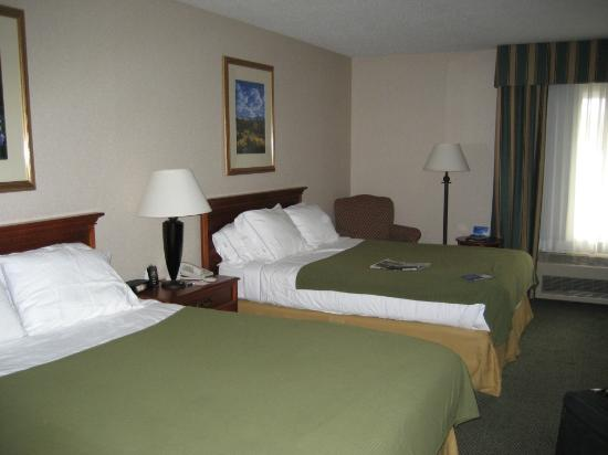 Holiday Inn Express Salida room