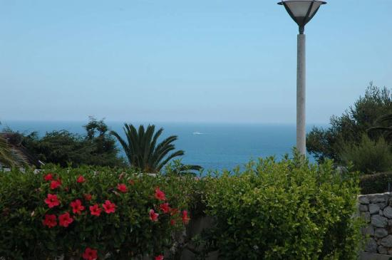 Salema, Portugalia: View from the property