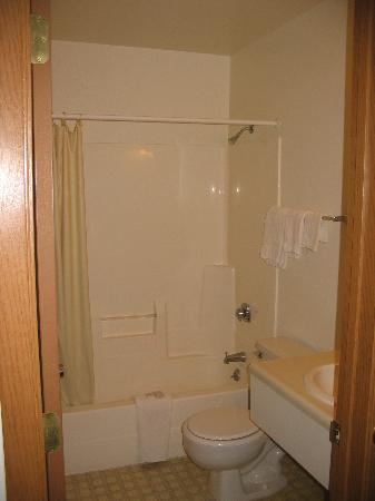 Econo Lodge Mt. Rushmore Memorial: Bathroom - Clean