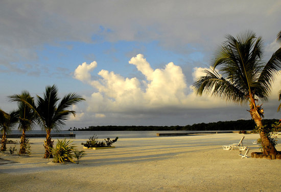 Turneffe Islands, Belize: Beach in front of the cabanas