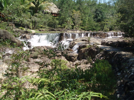 Plasencia, Belize : View at Blancaneaux 
