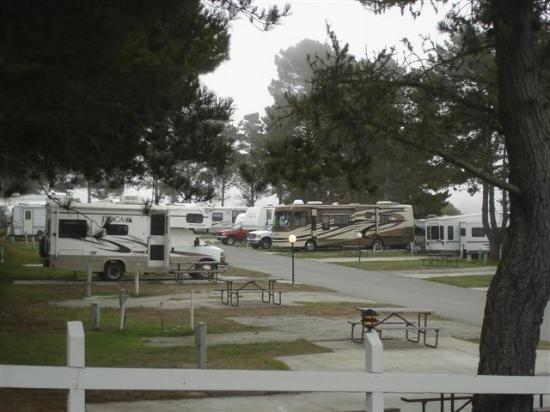 General View 3 Picture Of Pelican Point Rv Park Half