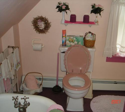 EdgeWater Farm Bed and Breakfast: Cosy Rosy bathroom