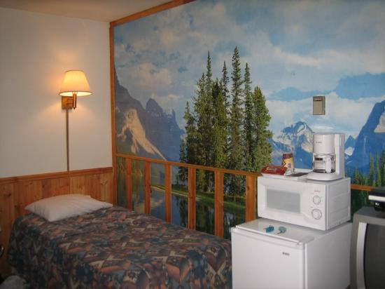 Cedar Lodge Motel & RV Park : Beautiful wallpaper in our unit.