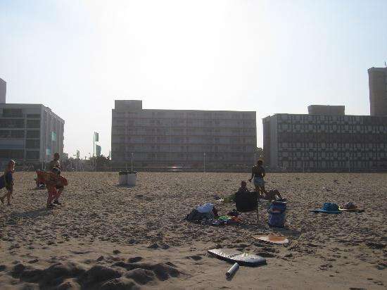 Marjac Suites: View from the beach