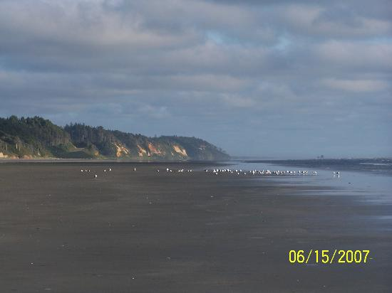 Pacific Beach State Park View South Picture Of Pacific