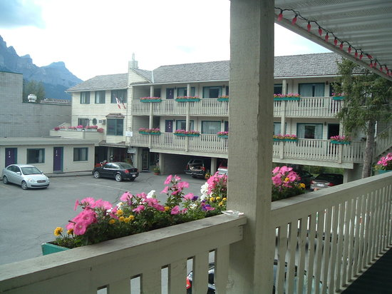 Bow Valley Motel: Pretty with summer flowers
