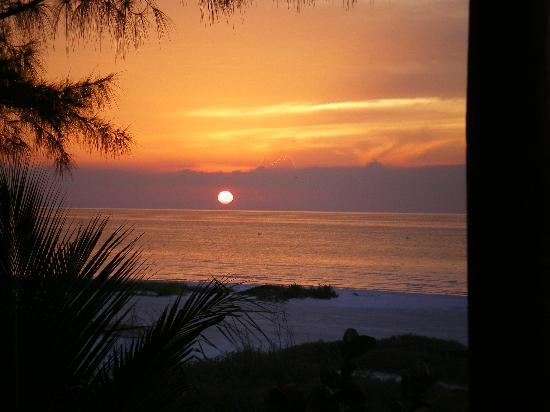 View from the balcony - sunset