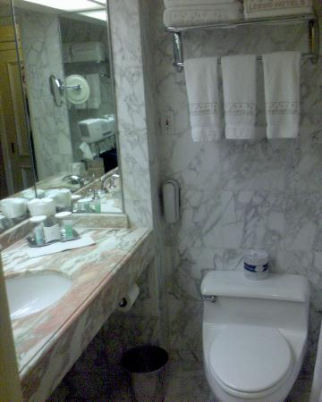 Marble bathroom small for Small marble bathroom ideas