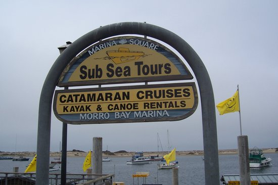 Sub Sea Tours and Kayaks