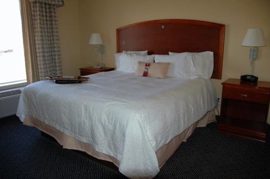 Hampton Inn Logan: King-size bed in the room