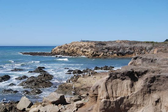 Cambria, Californie : Moonstone Beach 