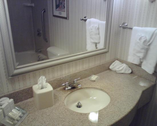 Hilton Garden Inn Hartford South Glastonbury: Bathroom