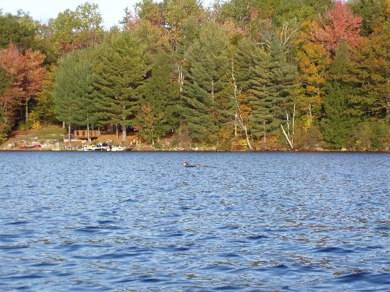Canaan Tourism 3 Things To Do In Canaan Nh Tripadvisor