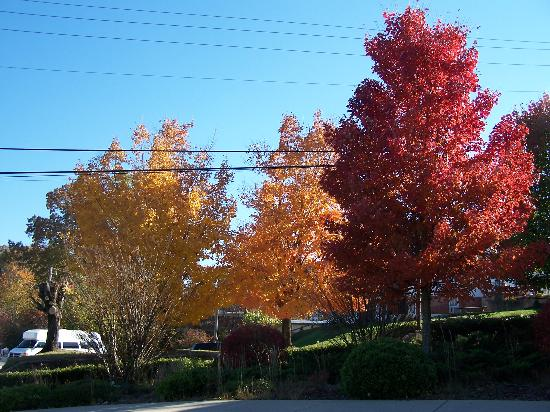 Fall colors in downtown Murphy, NC