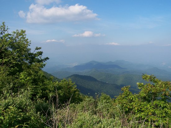Murphy, NC: From the top of Wayah bald, 5342 fr above sea level