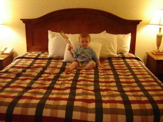 Red Lion Hotel Eugene: Toddler enjoying the comfy bed!