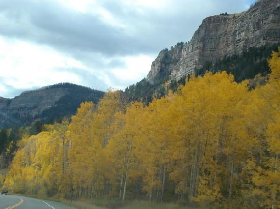 Purgatory Village Condo Hotel: The aspens were changing color all around the top of the mountain