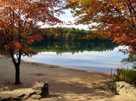 Concord, MA: Walden in Autumn