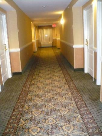 Comfort Inn &amp;; Suites Goshen / Middletown: Hallway on 2nd floor