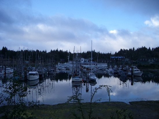 Ucluelet, Canada: Harbour Basin by Tauca Lea