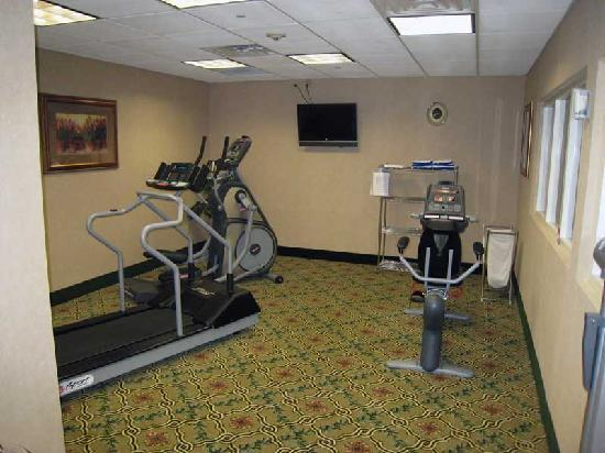 Hampton Inn &amp; Suites Greenfield: Fitness Center