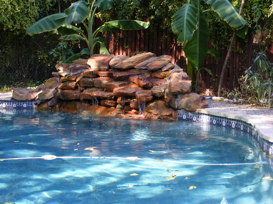 Alamo City's Little Flower Inn: Swimming pool has a relaxing waterfall