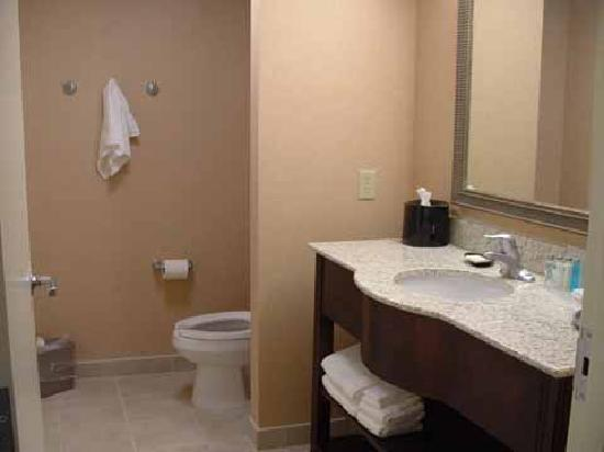 Hampton Inn &amp; Suites Rogers: Bath