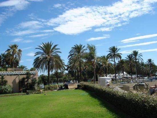 Atalaya Park Golf Hotel and Resort: Area of the hotel