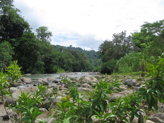 Puerto Viejo, Costa Rica: Yorkin River