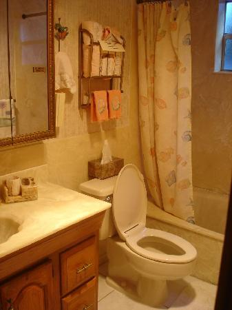 Deerfield Buccaneer Resort Apartments: bathroom unit 7