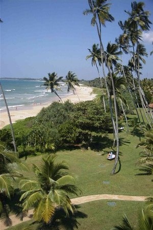 Beach of Bentota