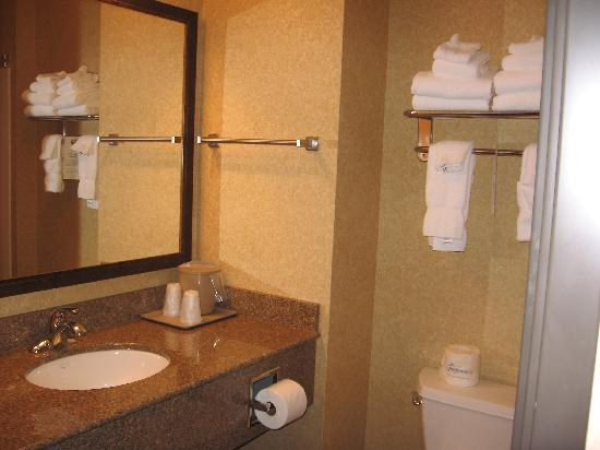 Comfort Inn & Suites McMinnville: bathroom