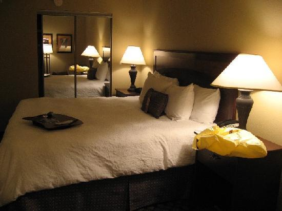 Hampton Inn Austin-Round Rock: Bed