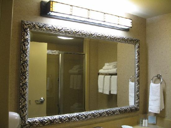 Hampton Inn Austin-Round Rock: Bathroom