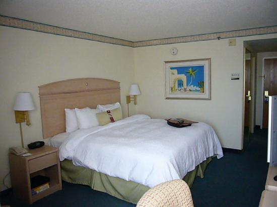 Hampton Inn Miami-Coconut Grove/Coral Gables: Room 613