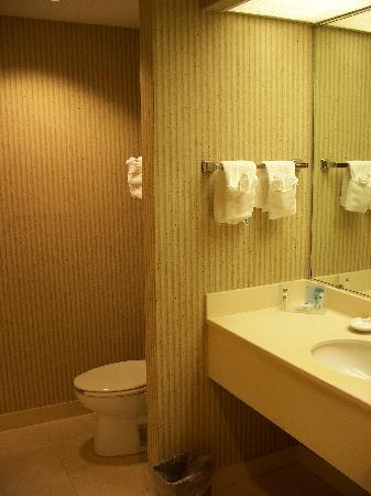 Hampton Inn Charleston North: Bathroom