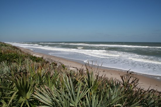‪Canaveral National Seashore‬