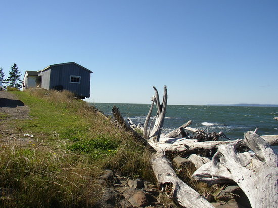 Nova Scotia, Canada: Driftwood & old fishing shacks on the Bay of Fundy shore