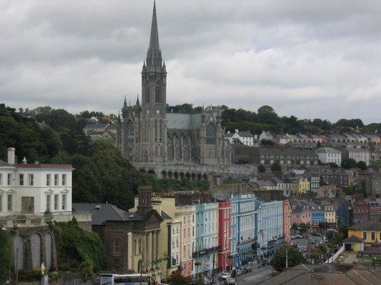 cork view