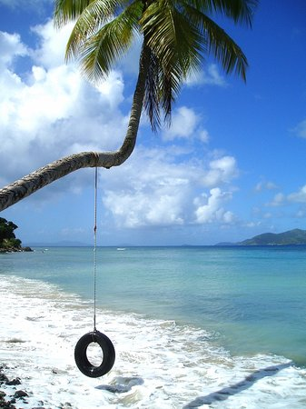 Tortola: From the beach